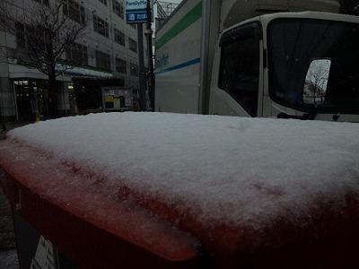 130206yuki.jpg