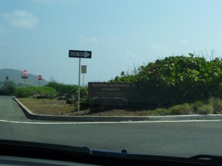2009 HAWAII 1068