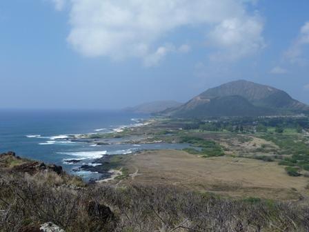 2009 HAWAII 1079