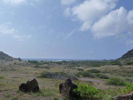2009 HAWAII 1074