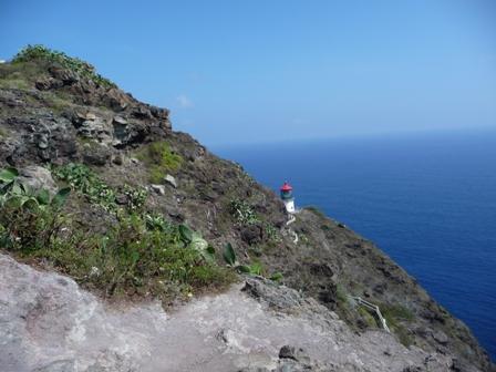 2009 HAWAII 1088