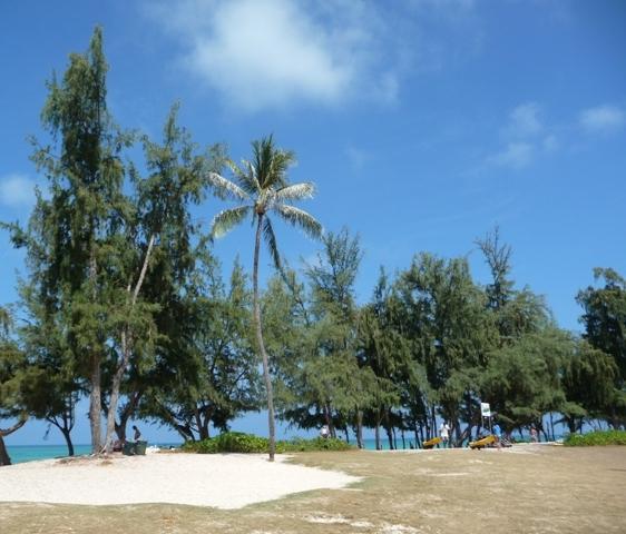 2009 HAWAII 1121