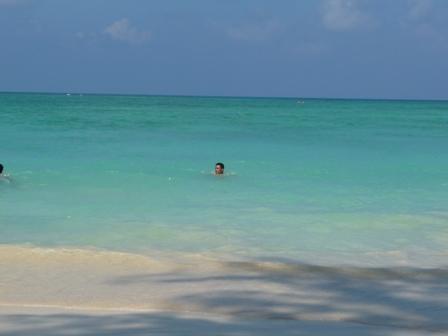 2009 HAWAII 1131