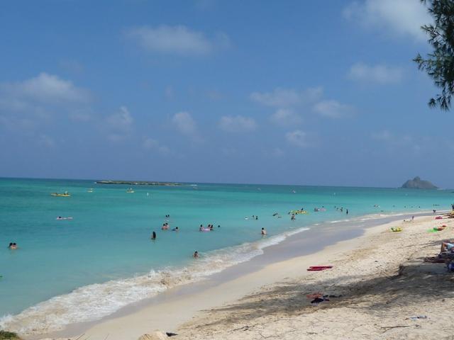 2009 HAWAII 1123
