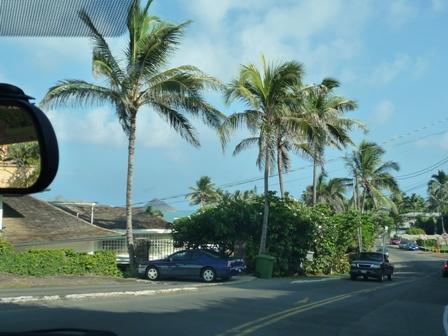 2009 HAWAII 1140