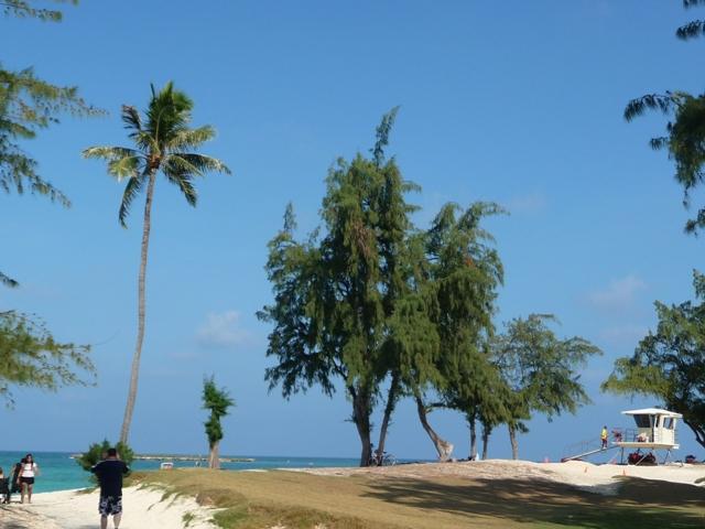 2009 HAWAII 1136
