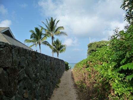 2009 HAWAII 1154