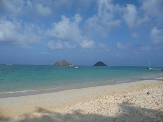 2009 HAWAII 1145