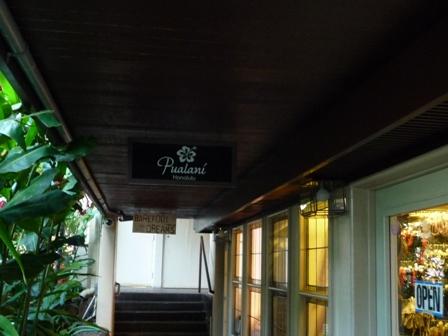 2009 HAWAII 1171