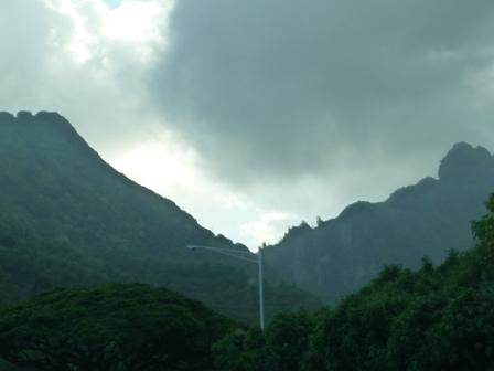 2009 HAWAII 1169