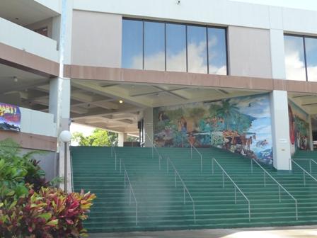 2009 HAWAII 1210