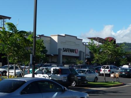 2009 HAWAII 1251