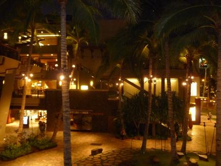 2009 HAWAII 1257