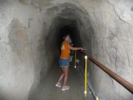2009 HAWAII 1278