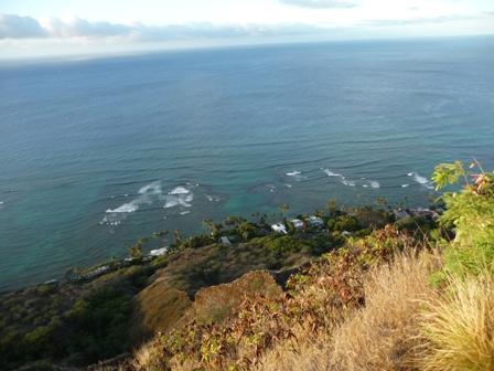 2009 HAWAII 1299