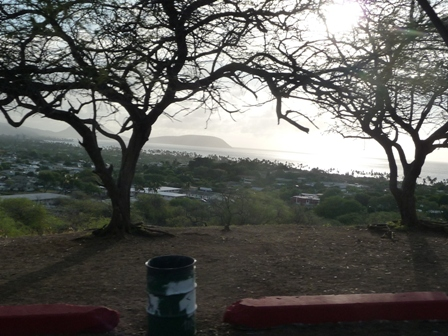 2009 HAWAII 1310