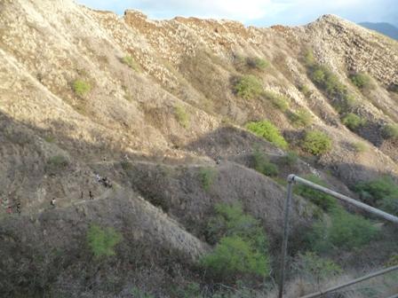 2009 HAWAII 1307