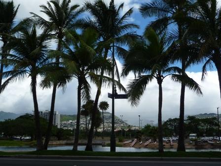 2009 HAWAII 1349