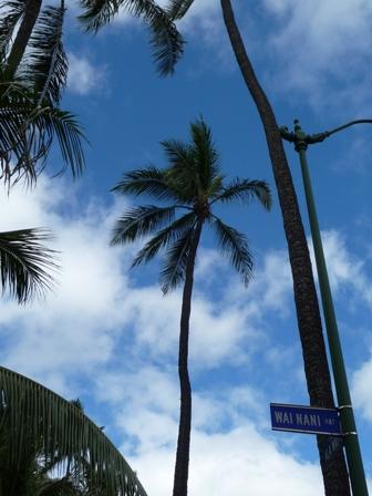 2009 HAWAII 1350