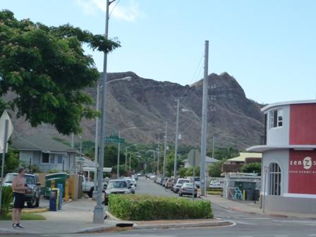 2009 HAWAII 1345