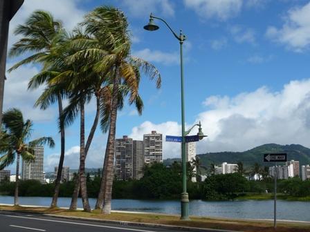 2009 HAWAII 1354