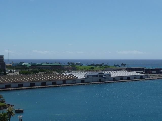 2009 HAWAII 1362