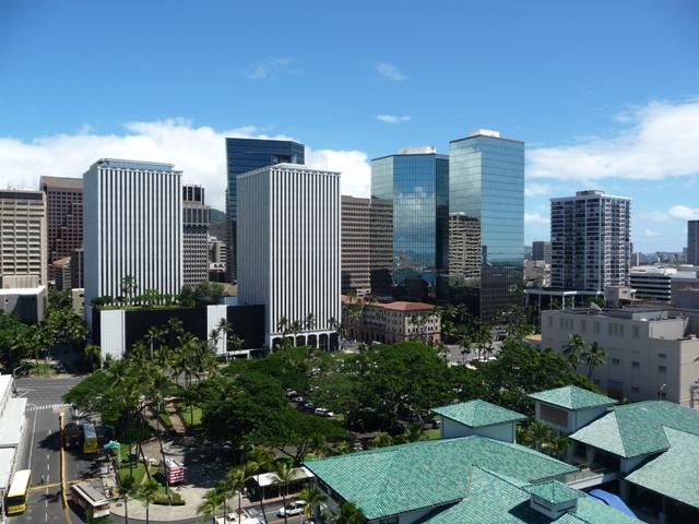 2009 HAWAII 1358