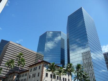 2009 HAWAII 1376