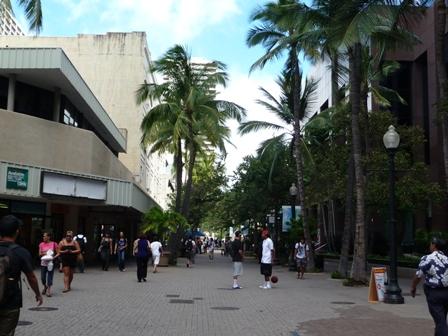 2009 HAWAII 1389