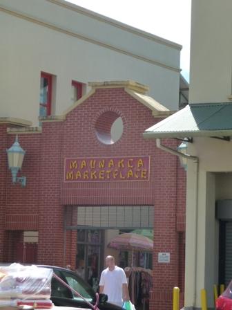 2009 HAWAII 1404