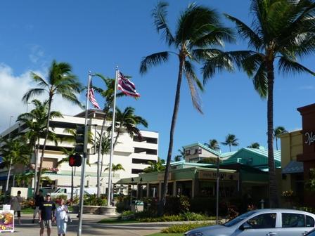 2009 HAWAII 1432