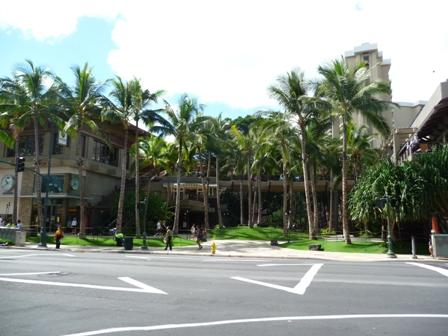 2009 HAWAII 1525