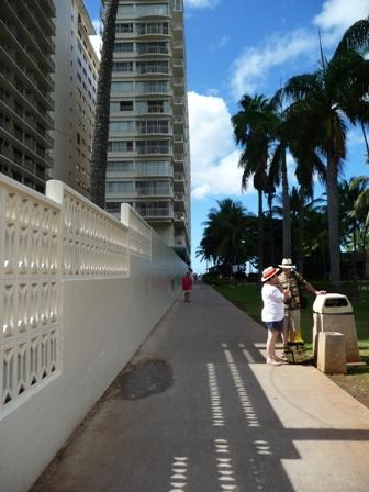 2009 HAWAII 1518