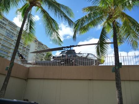 2009 HAWAII 1517