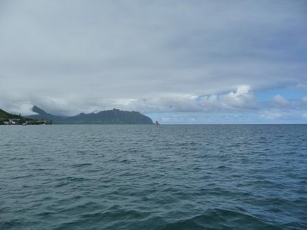 2009 HAWAII 1535