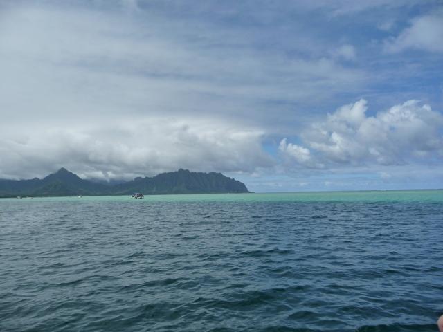 2009 HAWAII 1539