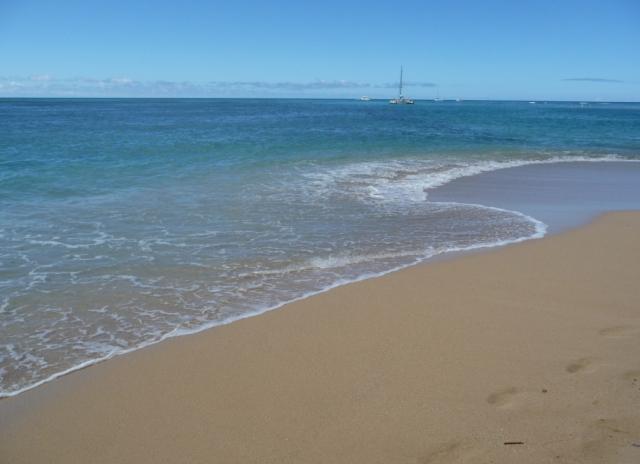 2009 HAWAII 1575