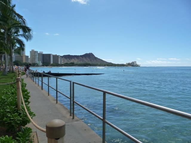 2009 HAWAII 1565