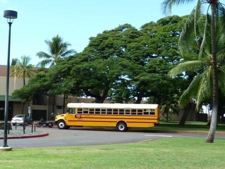 2009 HAWAII 1578