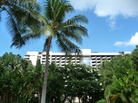 2009 HAWAII 1579