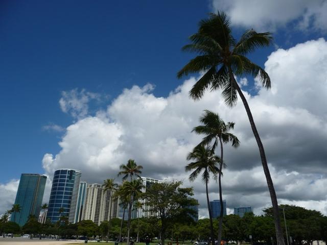 2009 HAWAII 1599