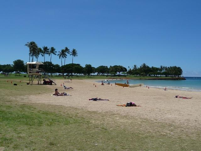2009 HAWAII 1596