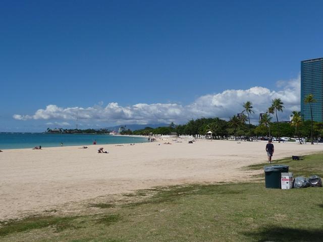 2009 HAWAII 1591