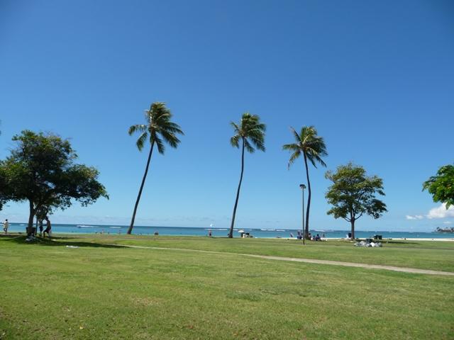2009 HAWAII 1590