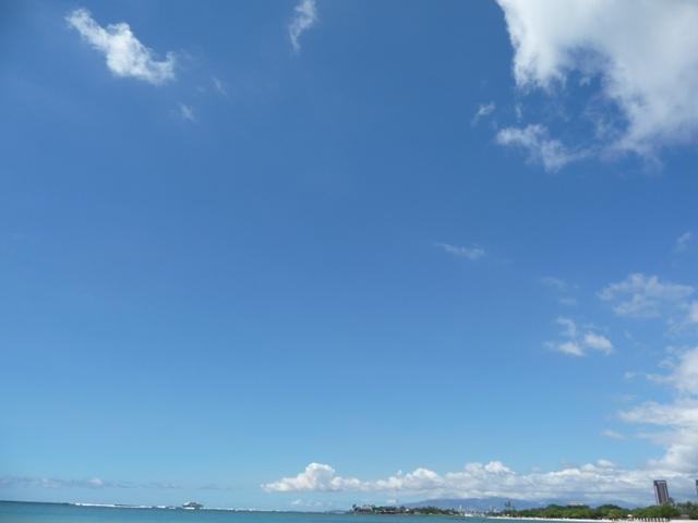 2009 HAWAII 1619