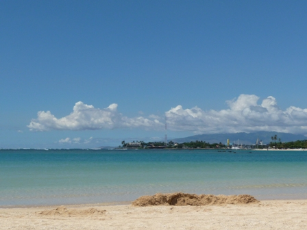 2009 HAWAII 1614