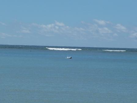 2009 HAWAII 1634