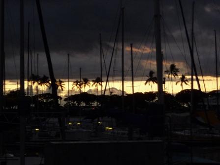 2009 HAWAII 1667