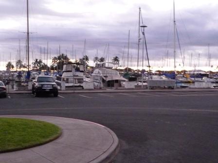2009 HAWAII 1666