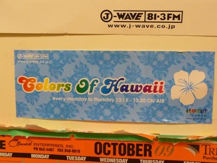 2009 HAWAII 1675